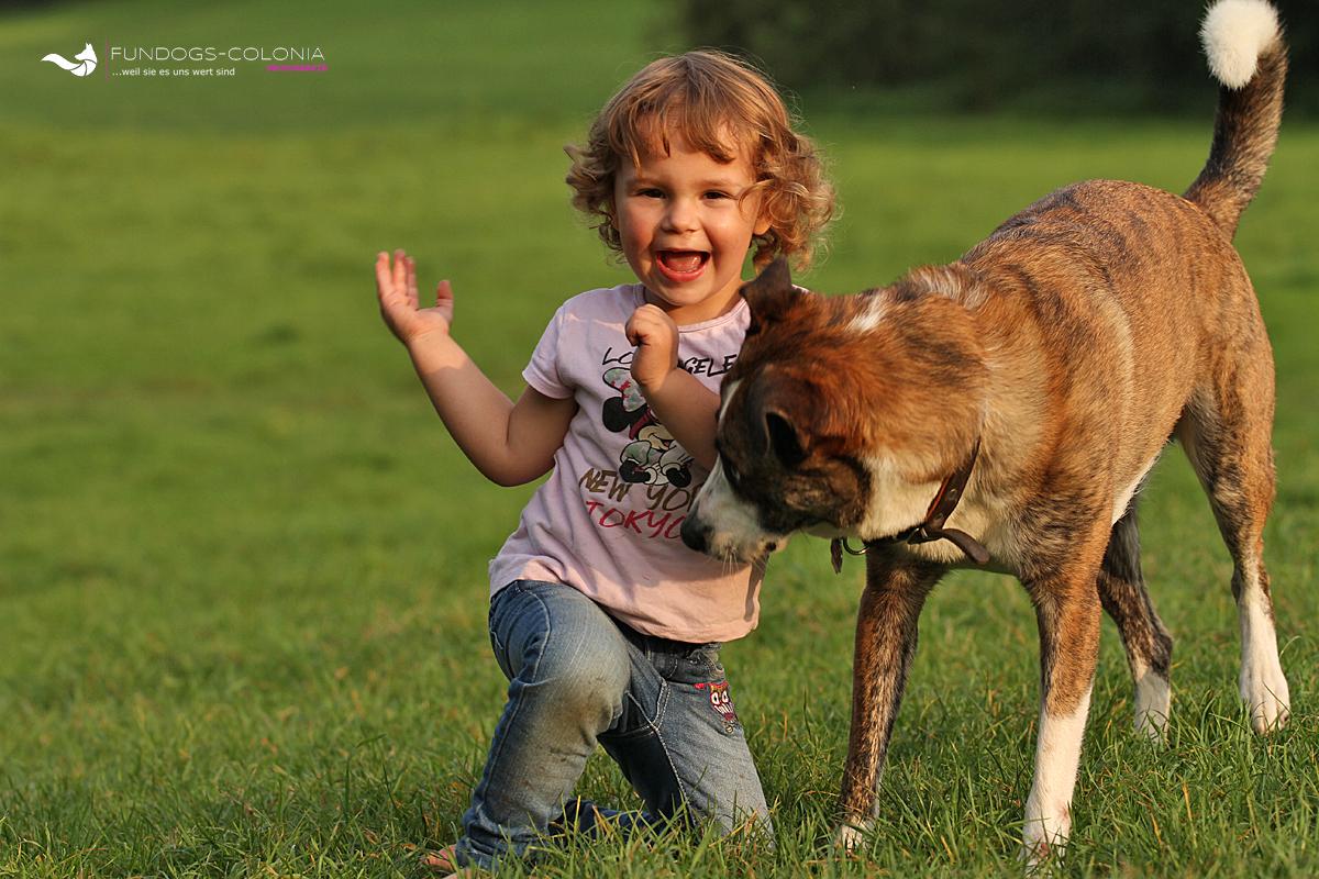 Herr Hund schnüffelt und wird neugierig